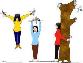 中共酷刑示意图:吊铐、固定铐、反铐在大树上