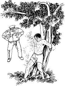 中共酷刑示意图:喂蚊虫咬