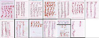 七百多位民众自发联名声援营救法轮功学员李兰奎