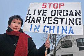 法轮功学员娜塔莉•泰普莉斯基手举的牌子上写着:制止中共活摘器官