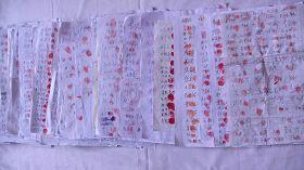 黑龙江伊春市有超过一万五千民众在秦荣倩的《喊冤昭雪书》上签名并按上大红手印