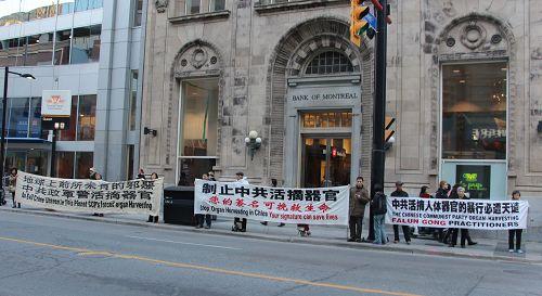 """多伦多法轮功学员在二零一五年十一月九日(星期一)下午四点至五点半,在市中心的Yonge央街和Queen皇后街交界,举行""""声援诉江大潮""""真相长城和举报江泽民征签活动。"""