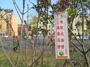 2016-5-17-minghui-poster-jilin-03--ss.jpg