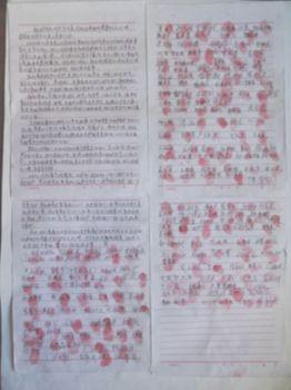现在正是农村农忙季节,村民在百忙中纷纷签名,要求当即释放杨运涛。两个村屯共250户左右,共有208人签名。下面是村民的请愿。
