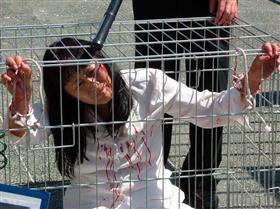 酷刑演示:关铁笼子