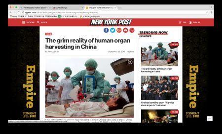 '图5:9月21日上午《纽约邮报》网上点击量第一文章《中国活摘器官的严峻现实》(网络截图)'