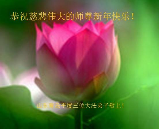 大陸法輪功學員恭祝李洪志大師新年好(44條)