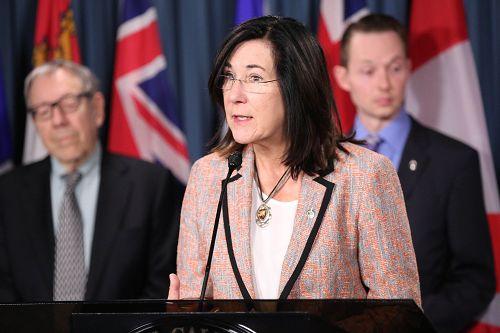 图3:新民主党国会议员、国会国际人权委员会副主席Cheryl Hardcastle