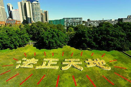 """'图1:澳洲法轮功学员在悉尼皇家植物园大草坪上排字""""法正天地"""",展示修炼的坚定信念。'"""