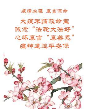 2020-2-12-buganjiao-zhenyan--ss.jpg