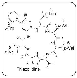 '路邓菌素(lugdunin)的化学结构'
