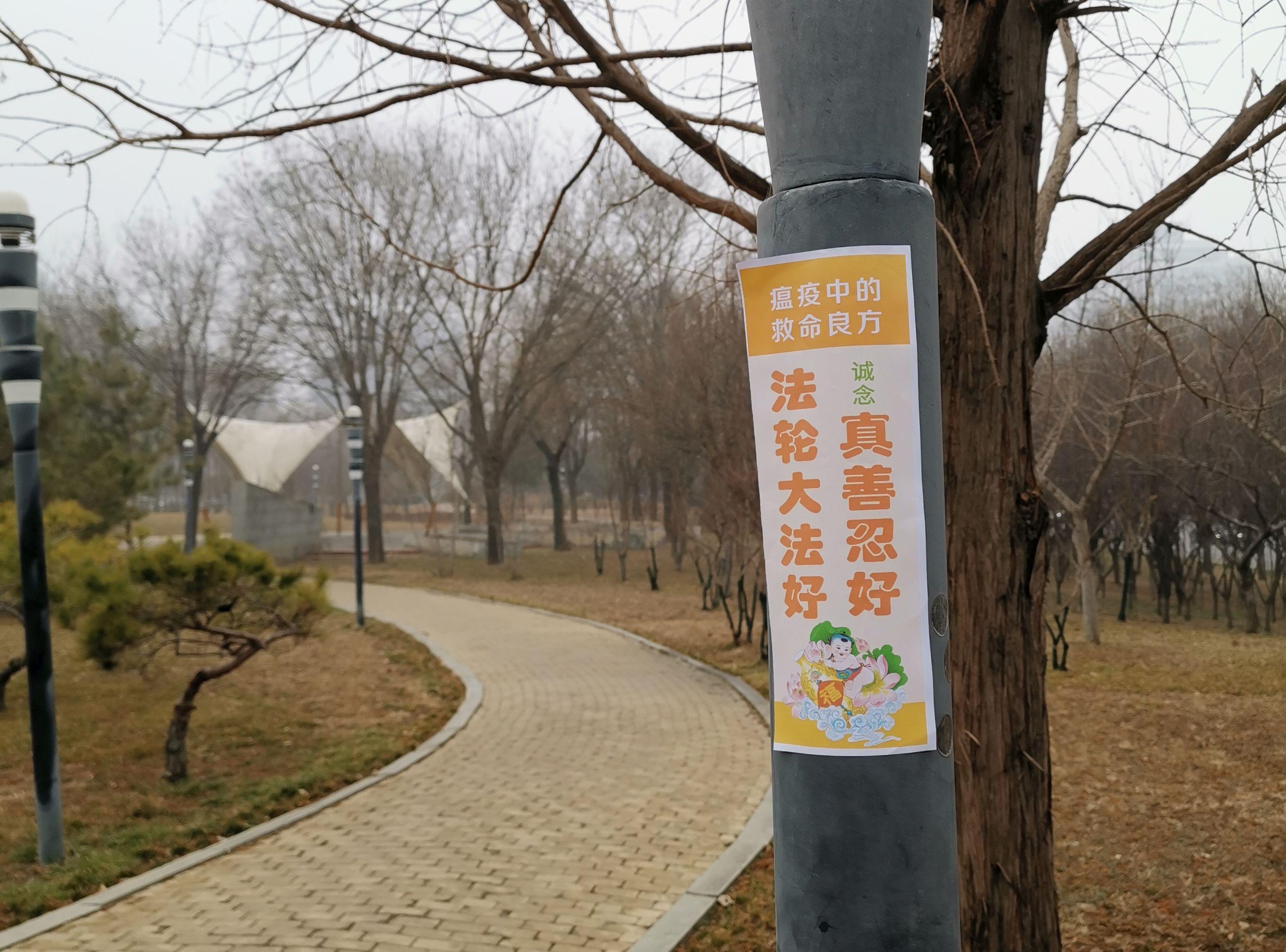 中国大陆法轮功学员用真相贴传播避疫良方