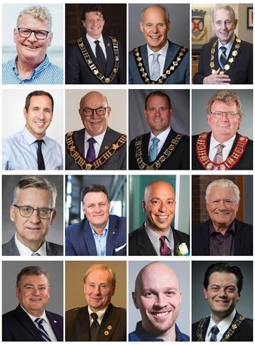 '圖1:16位市長和市議員'