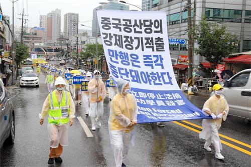'图1~4:二零二零年八月九日,部份法轮功学员在韩国华人聚居地声援3.6亿中国人<span class='voca' kid='82'>三退</span>大游行。'