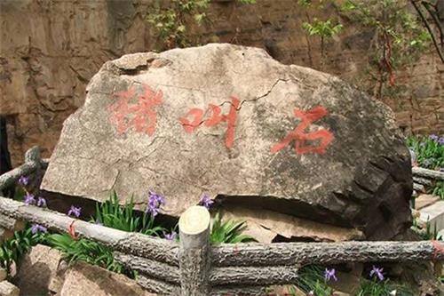 2021-2-14-zhujiaoshi--ss.jpg